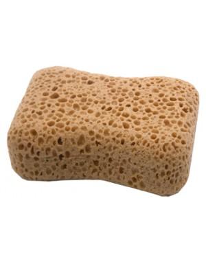 Σφουγγάρι πλυσίματος μεγάλο CARLINEA(011012)
